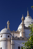 Tunisia. Carthage - Byrsa hill. Saint Louis cathedral (mixed Gothic and Byzantine styles) built by Cardinal Lavigerie in 1890