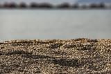 Scorcio di spiaggia in ghiaia