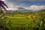 The Rice Fields of Sidemen, Bali, Indonesia. The village is surrounded by rice fields and agricultural land while people still tend to their fields and prepare ceremonies at the local temples.