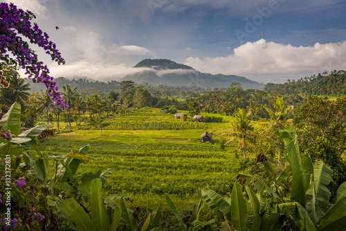 Foto op Aluminium Rijstvelden The Rice Fields of Sidemen, Bali, Indonesia. The village is surrounded by rice fields and agricultural land while people still tend to their fields and prepare ceremonies at the local temples.