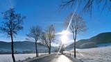 Sonne blendet Autofahrer im Winter