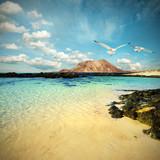 Wild seashore in Fuerteventura, toned image