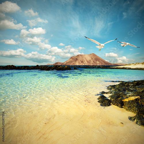 Foto op Canvas Canarische Eilanden Wild seashore in Fuerteventura, toned image