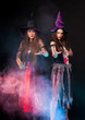 Постер, плакат: Animators dressed as witches