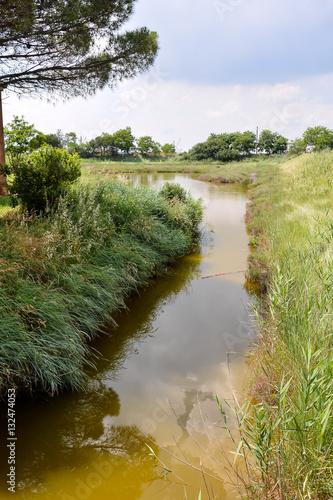 Poster Landscape The Po Delta
