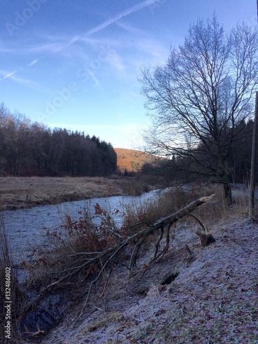 Landschaft am Fluss im Winter mit einem Baum, der von einem Biber gefällt wurde Poster