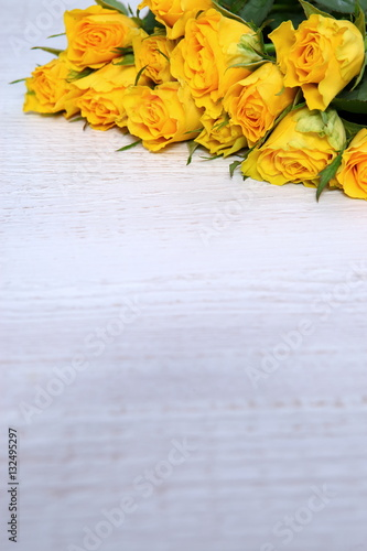 Róże to dowód mimłości