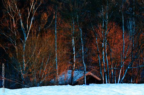 Poster Zimowy Ciepły Świt