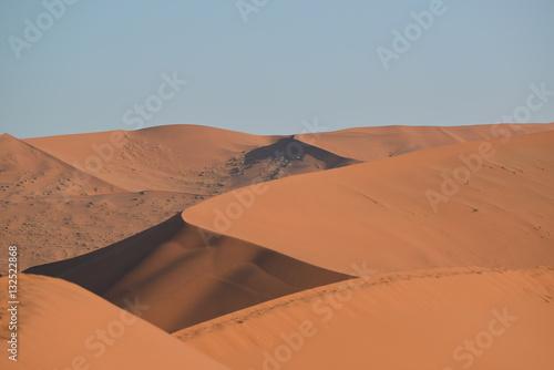 Poster Wüste