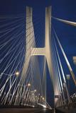 Fototapeta Fototapety mosty linowy / wiszący - Most linowy © bnorbert3