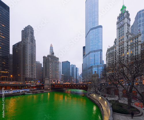 St. Patrick's Day Chicago city, Green River, Illinois, USA
