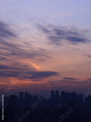 Poster Shinjuku cityscape and Mt