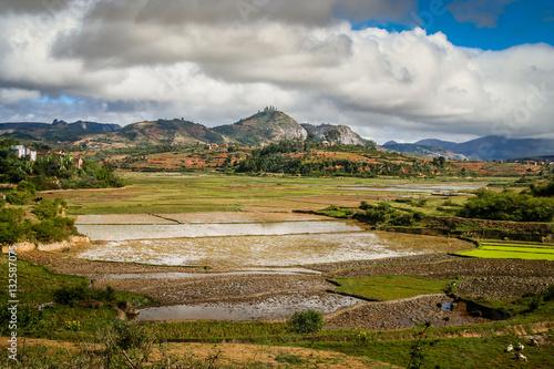 Fotobehang Ricefields of Madagascar
