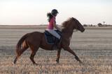 caballo galopando