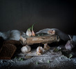 rustic still life, vintage. garlic, rye bread, flour, and old books on a wooden table