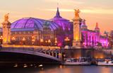 Paris, la seine près du grand palais et du pont Alexandre-iii