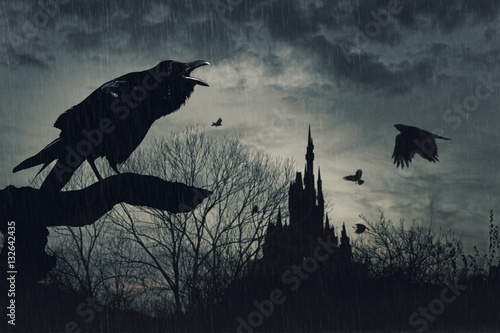 horror scene with a raven in front and castle at  back under rain at dusk on blu