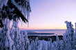 Winter sunset over the ocean. Grouse Mountain Park. North Vancouver. British Columbia. Canada.