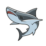 Shark for mascot, tattoo or t-shirt print design