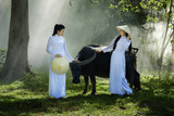 Two Vietnam girls in Ao Dai dress with buffalo, Vietnam traditional dress, Ao Dai is famous traditional costume for woman in Vietnam.