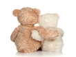 white and brown teddy bear that hugs