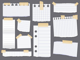 Line note papers. Scotch taped lined paper pieces