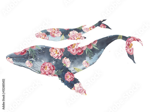 Whale family with flowers artwork. Watercolor print with big and baby blue whale and peonies bouquet pattern. Hand drawn animal silhouette isolated on white background. Creative natural illustration - 132685612