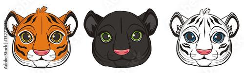 animal, cartoon, wild, cat, zoo, circus, dangerous, illustration, predator, hunter, panther, black, fast, muzzle, face, white, orange, tiger, three