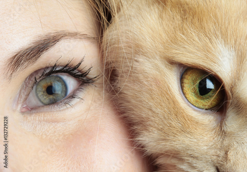 Poster Human eye with cat eye