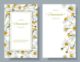 Chamomile flower banners