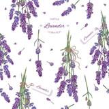 Lavender seamless pattern - 132763699