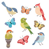 Set of colorful birds and butterflies isolated on white background. - 132787652