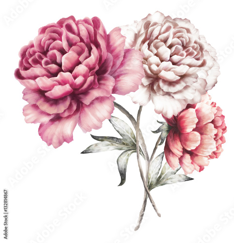 Foto op Plexiglas Magnolia pink peonies. watercolor flowers. floral illustration in Pastel colors. bouquet of flowers isolated on white background. Leaf. Romantic composition for wedding or greeting card.