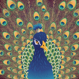 Cartoon Peacock Portrait