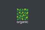Leaves Eco Logo square design vector. Organic Natural Garden - 132844869