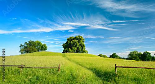 Lato krajobraz Footpath przez Zielonego paśnika pod pięknym niebieskim niebem