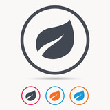 Leaf icon. Fresh organic product symbol. Colored circle buttons with flat web icon. Vector