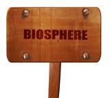 biosphere, 3D rendering, text on wooden sign