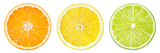 Citrus fruit. Orange, lemon, lime, grapefruit. Slices isolated o