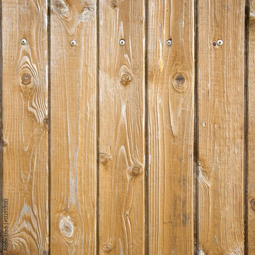 Tuinposter Hout Texture of wood