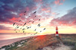Leinwandbild Motiv Leuchtturm an der Küste
