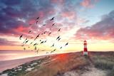 Leuchtturm an der Küste - 132989620