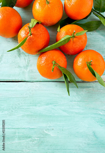 Póster tangerines with green leaves on turquoise wooden background