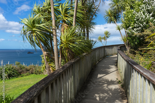 Fotobehang Cathedral Cove Wooden boardwalk to the beach
