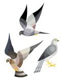 Stylized Birds - Harrier