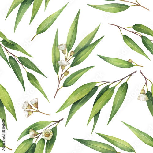 Watercolor vector seamless pattern with eucalyptus leaves and branches. © elenamedvedeva