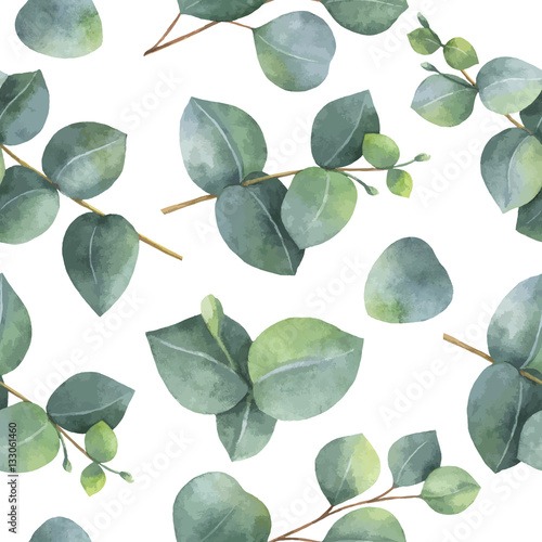 Watercolor vector seamless pattern with silver dollar eucalyptus leaves and branches. - 133061460