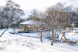 Setagaya Park - Ein Japanischer Garten in Wien - Winter