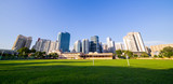 grassland green field with trees and buildings cityscape