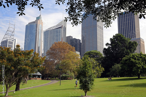 Poster Sydney Botanic gardens with business district behind